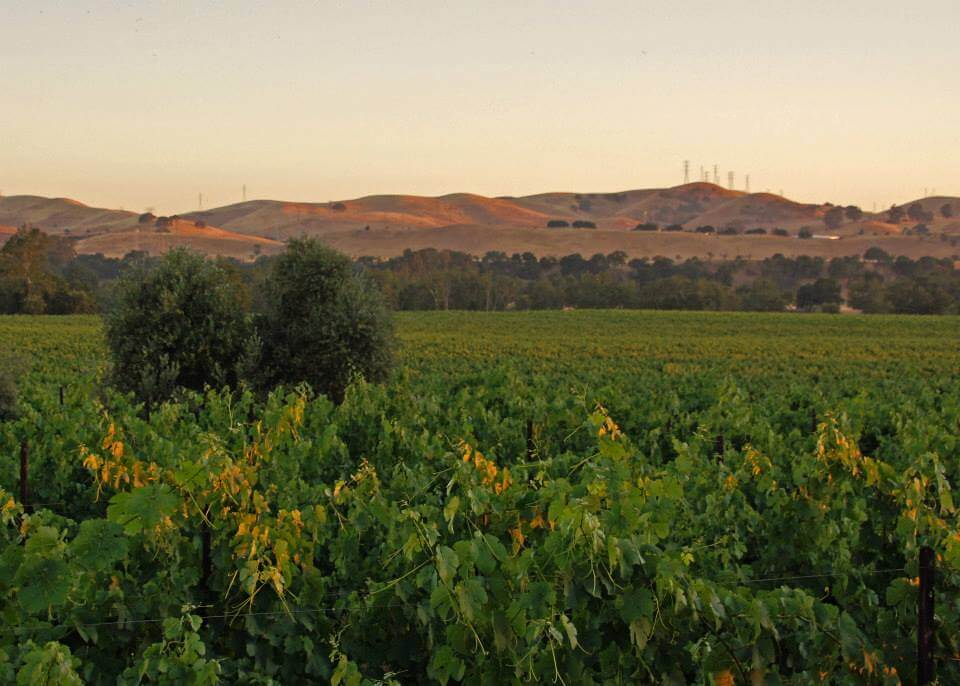 Livermore Valley's Westside Wine Trail