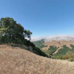 Las Trampas Wilderness Bollinger Creek Trail