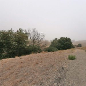 Sycamore Valley Short Ridge