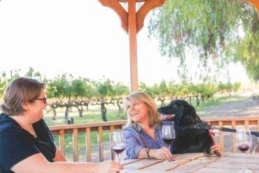 Bella and friends at Retzlaff Winery