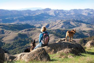 Hiking with Dogs | Visit Tri-Valley