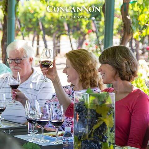 Concannon Vineyard - Toast - VisitTriValley