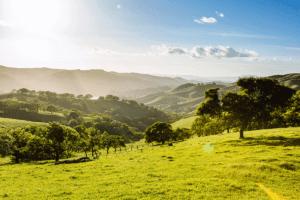 Del Valle Regional Park | Visit Tri-Valley