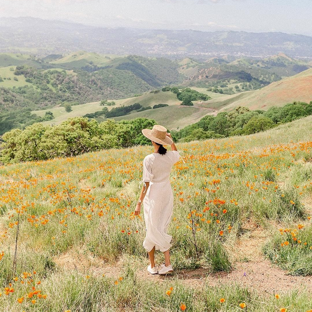 Woman stands in a field of wildflowers looking out at the view from Mt. Diablo State Park