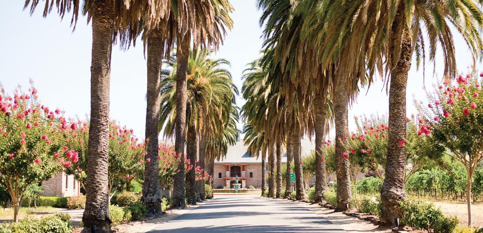 Palm-Event-Center