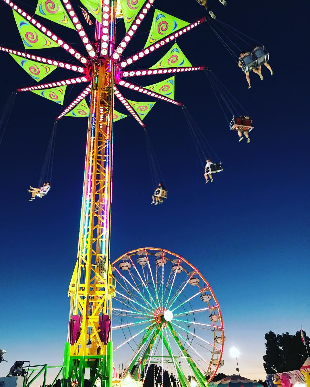 10 Reasons to Visit the Alameda County Fair