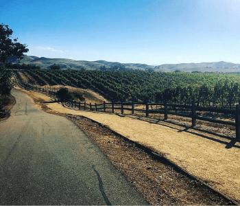 Sycamore Grove Park Trail