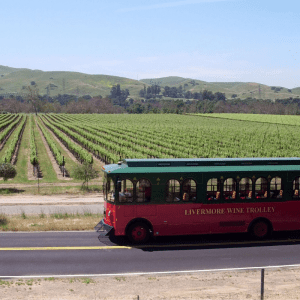 Wine Trolley-Vineyards