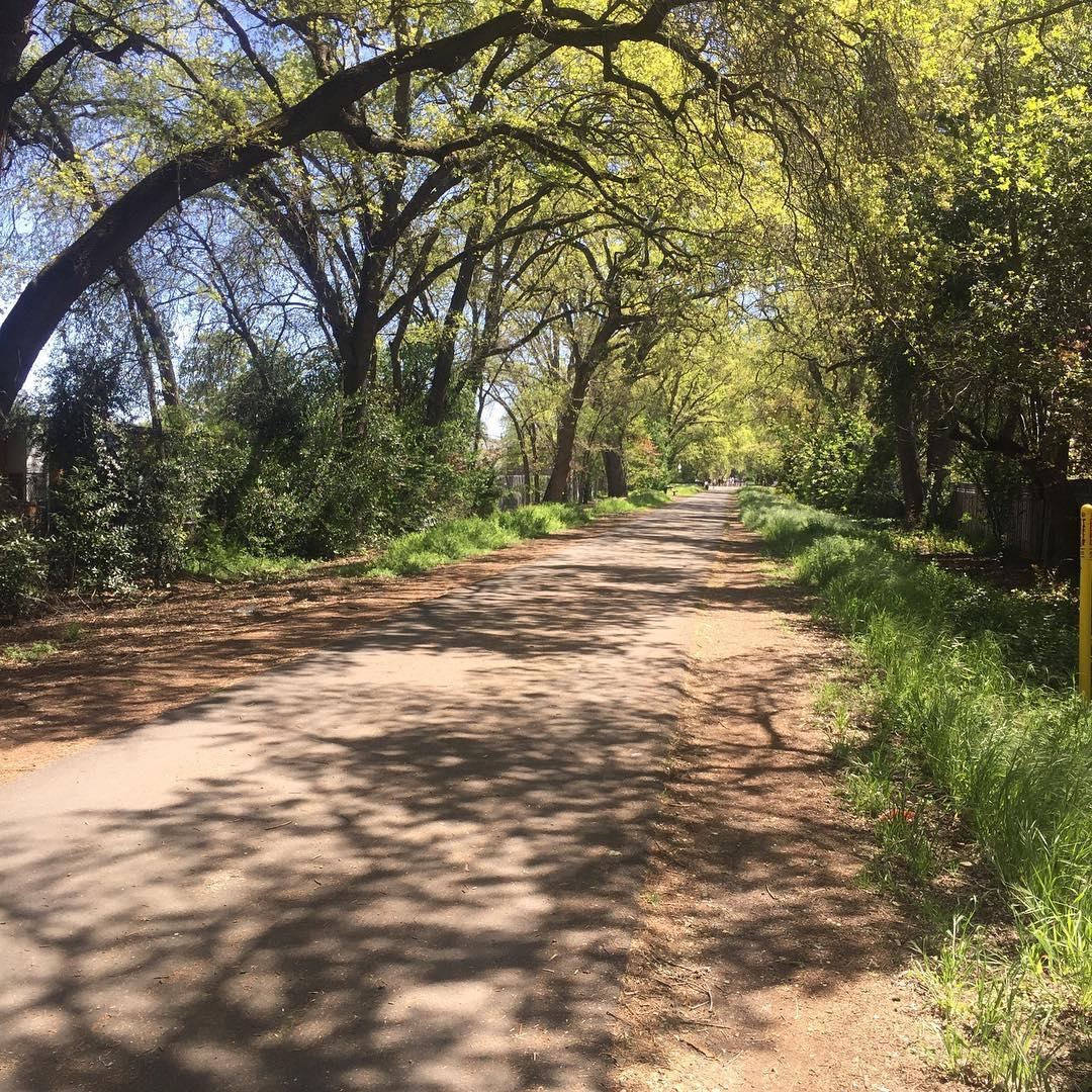 Iron Horse Trail in Danville, CA