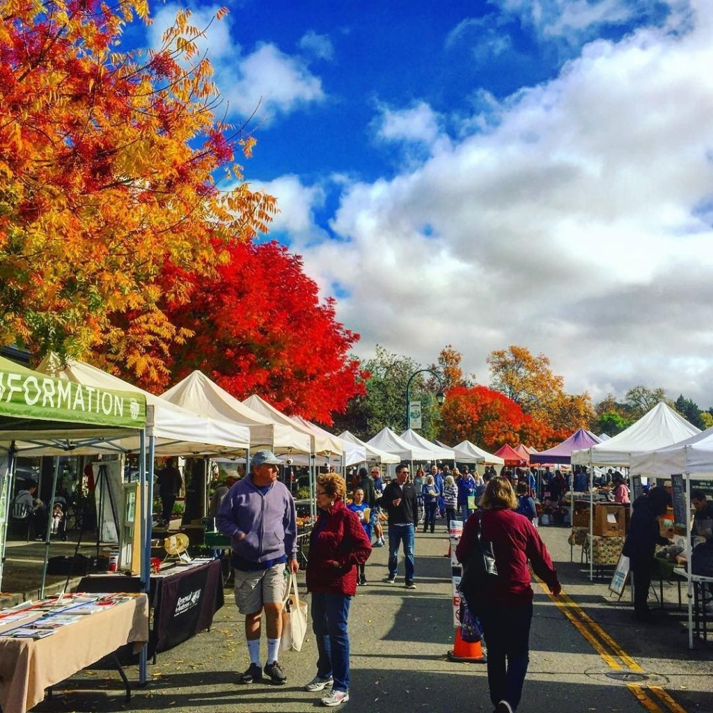 brightly colored fall trees at the pleasanton farmers market