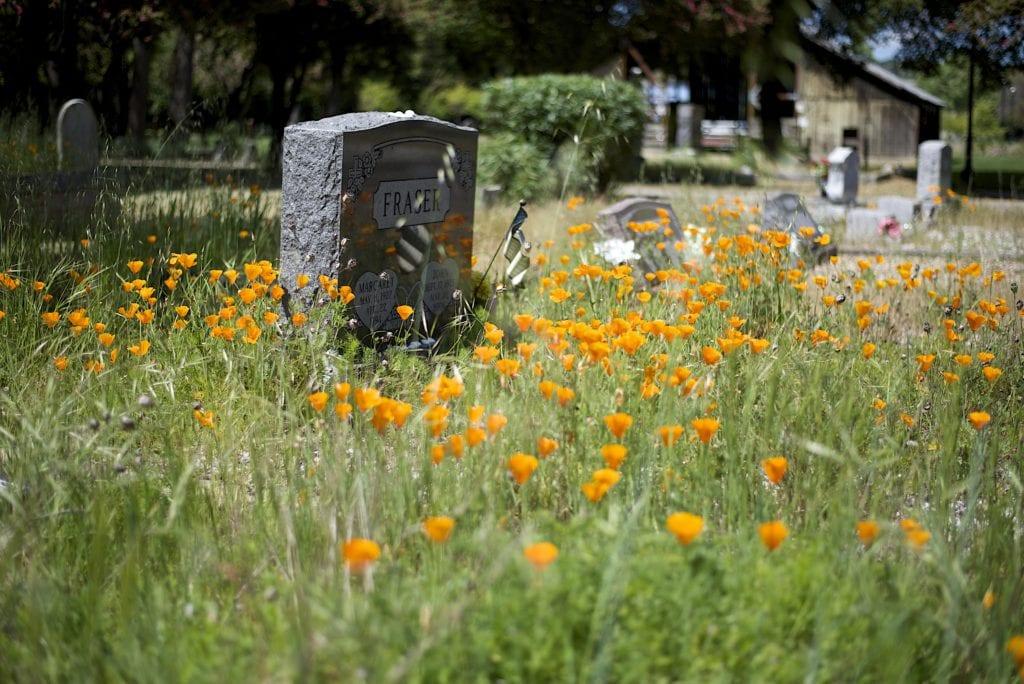 dublin historic cemetery