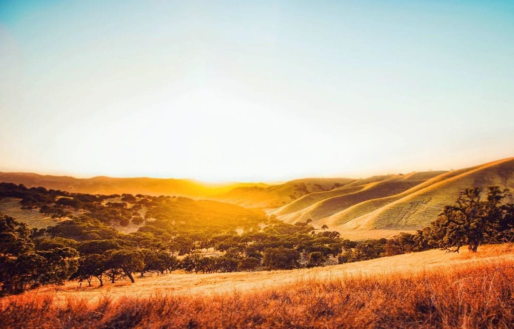 rolling hills at Del Valle Regional Park sunset