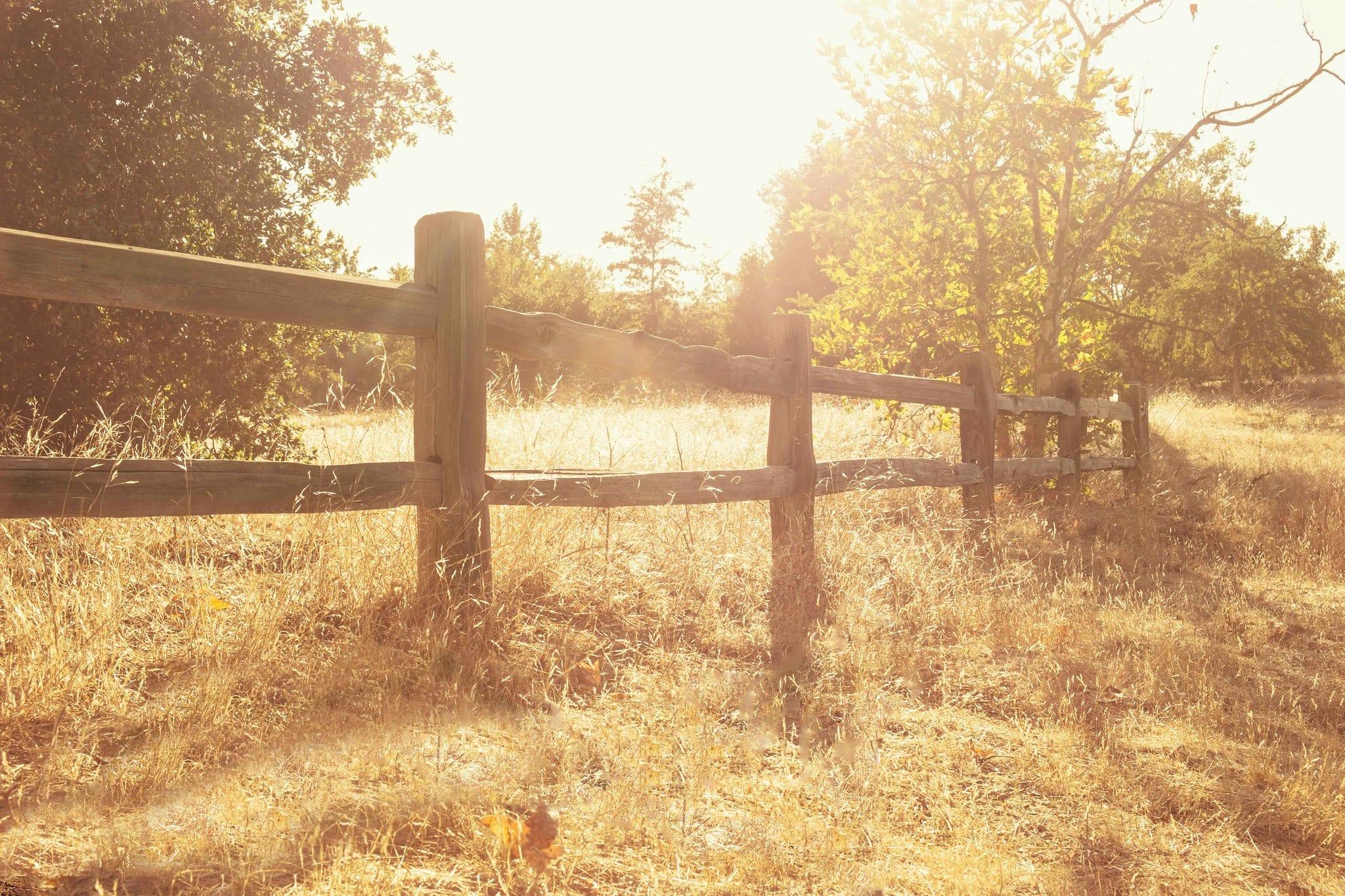 Sycamore Grove Park fence