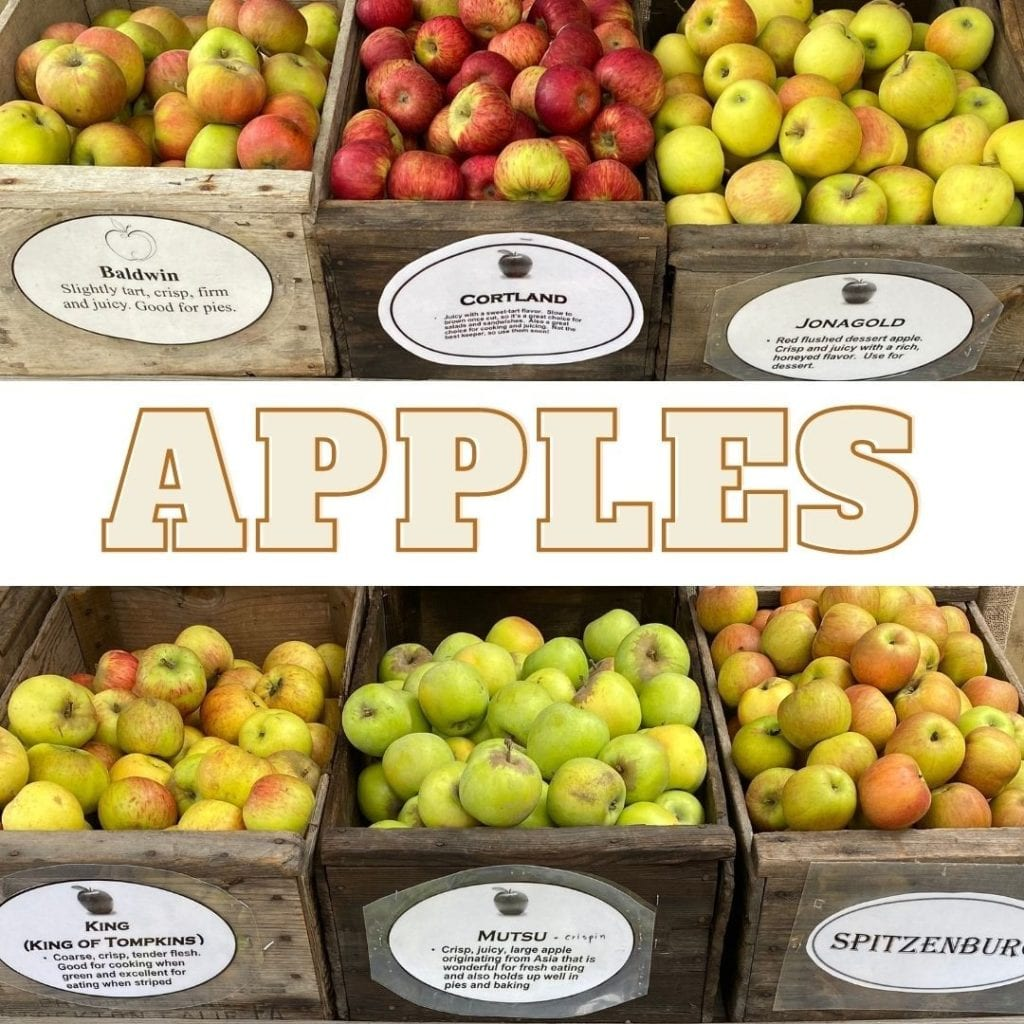 bins of apples at alden lane nursey